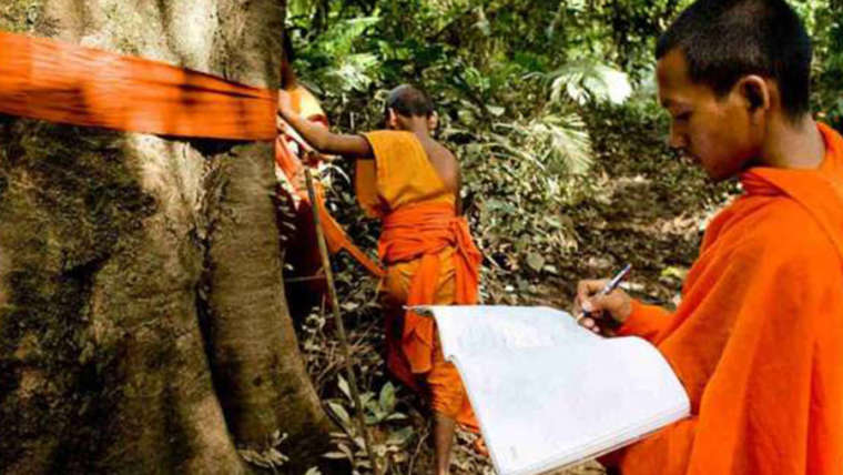Buddhist Monks Battle to Save Cambodia's  Forests